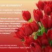 Поздравление с 8 марта!!!.png